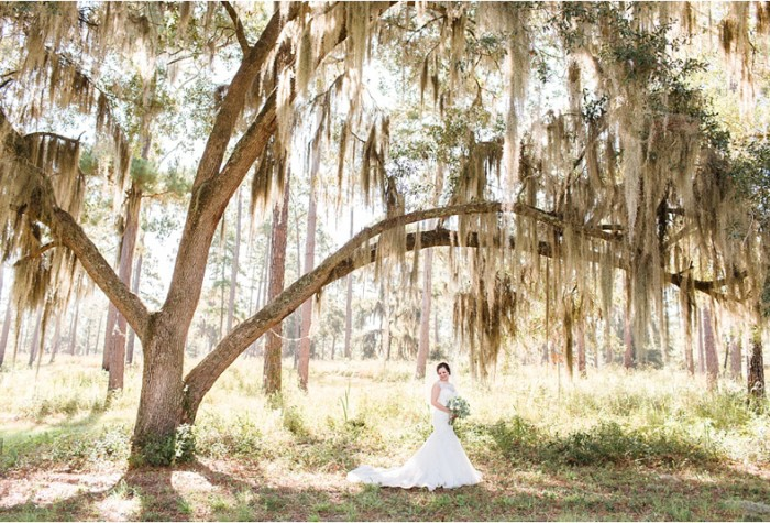 Langwood Plantation | Bridals