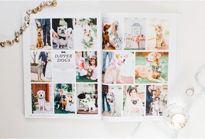 Southern Weddings Volume 7